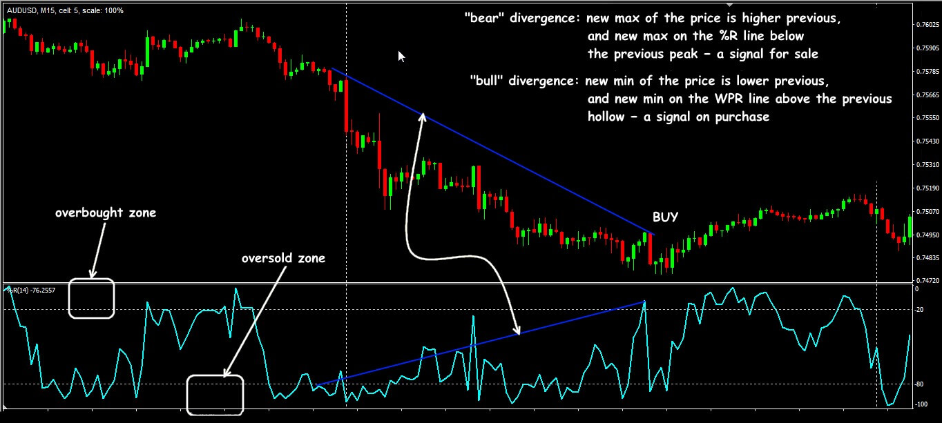 WPR: trade in divergence